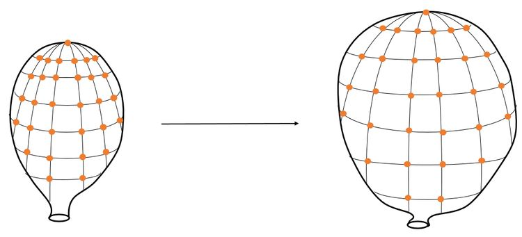 An analogy for the expanding universe. Galaxies, though fixed in space, appear to see the others recede from them like pennies on the surface of an expanding balloon. The change in distance is by a factor of the scale factor \(a(t)\).