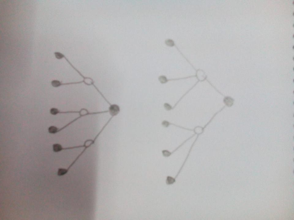 Bi-Tri Trees of Height 2
