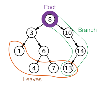 Roots, trees, and branches, are the basic parts of a tree datastructure
