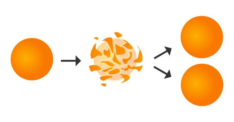 The Banach-Tarski paradox, in which a ball can be rearranged into two balls of the same size as the original, is a counterintuitive consequence of the axiom of choice