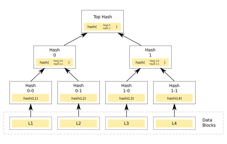 Binary Merkle Tree