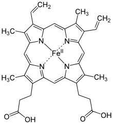 Chemical structure of a heme group