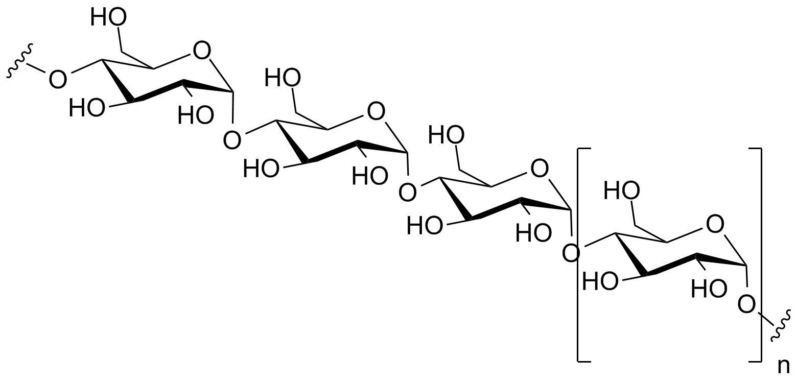 Starch, a 1,4 alpha-linked glucose polymer. Public Domain Image.